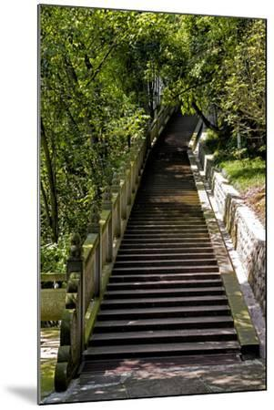 China 10MKm2 Collection - Stairway in the Forest-Philippe Hugonnard-Mounted Photographic Print