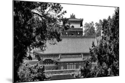 China 10MKm2 Collection - Suzhou Summer Palace-Philippe Hugonnard-Mounted Photographic Print