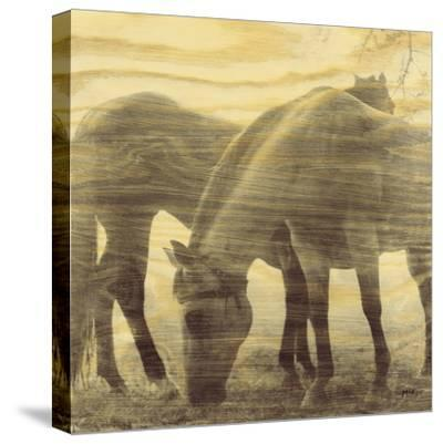 Things That Have Passed-Casey Mckee-Stretched Canvas Print
