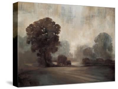 Sepia-Simon Addyman-Stretched Canvas Print