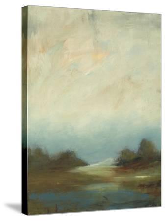 Contemporary Vista II-Lisa Ridgers-Stretched Canvas Print
