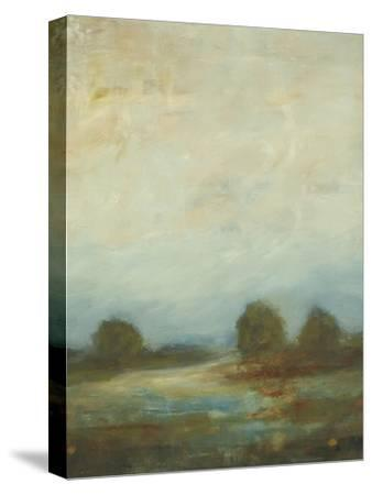 Contemporary Vista I-Lisa Ridgers-Stretched Canvas Print
