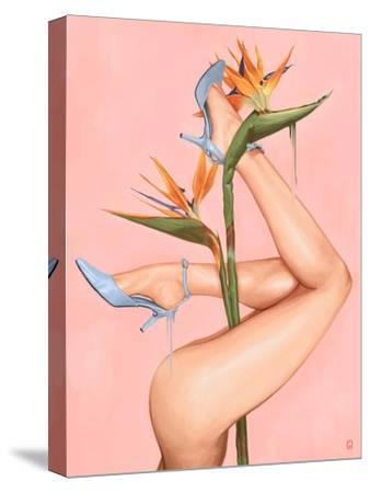 Bird of Paradise-Alexander Grahovsky-Stretched Canvas Print
