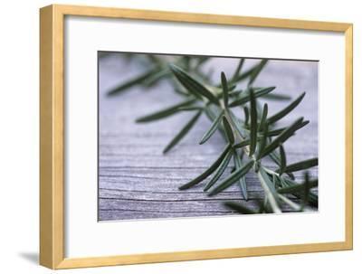 Rosemary-Maxine Adcock-Framed Photographic Print
