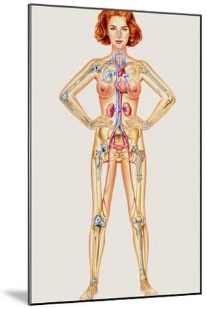 Prosthetic Woman: Artwork of Artificial Implants-John Bavosi-Mounted Photographic Print