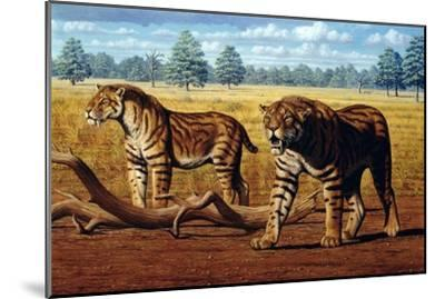 Sabre-toothed Cats, Artwork-Mauricio Anton-Mounted Photographic Print
