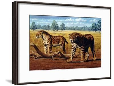 Sabre-toothed Cats, Artwork-Mauricio Anton-Framed Photographic Print