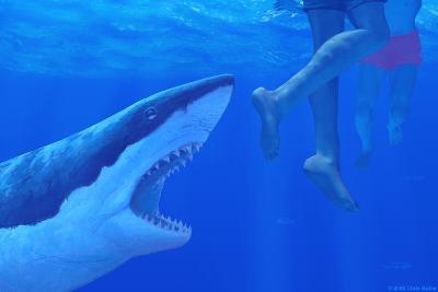 Shark Attack-Chris Butler-Photographic Print