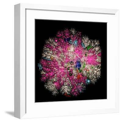 Computer Graphic of Global Internet Traffic- Caida-Framed Photographic Print