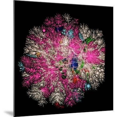 Computer Graphic of Global Internet Traffic- Caida-Mounted Photographic Print
