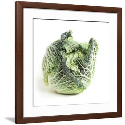Cabbage-Cristina-Framed Photographic Print