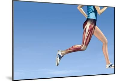 Leg Muscles In Running, Artwork-Henning Dalhoff-Mounted Photographic Print