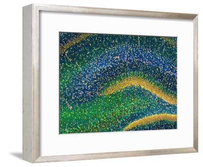 Hippocampus Brain Tissue-Thomas Deerinck-Framed Photographic Print