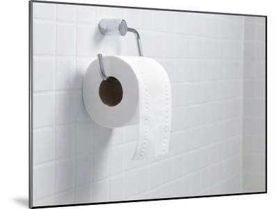 Toilet Paper Holder And Roll-Tek Image-Mounted Photographic Print