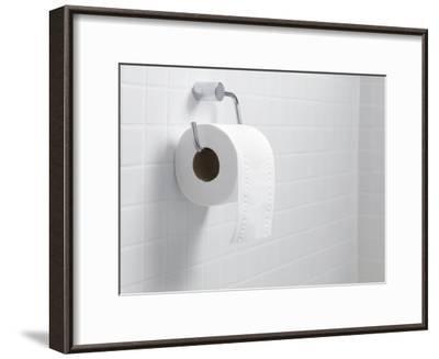 Toilet Paper Holder And Roll-Tek Image-Framed Photographic Print