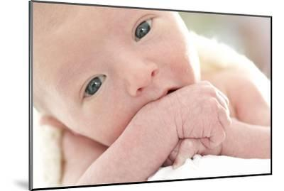 Newborn Baby Boy-Ruth Jenkinson-Mounted Photographic Print