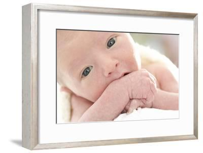 Newborn Baby Boy-Ruth Jenkinson-Framed Photographic Print