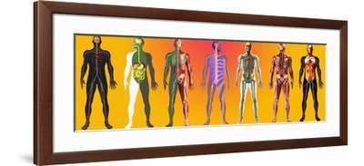 Human Anatomy ,artwork-Mehau Kulyk-Framed Photographic Print