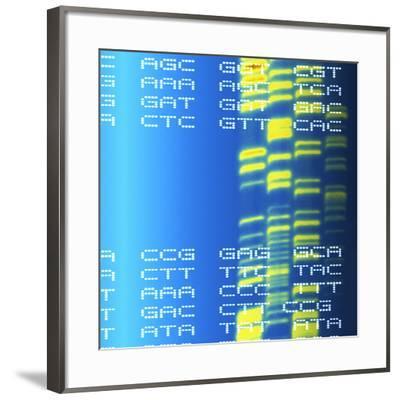 DNA Autoradiogram And Codons-Mehau Kulyk-Framed Photographic Print