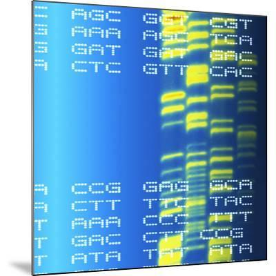 DNA Autoradiogram And Codons-Mehau Kulyk-Mounted Photographic Print