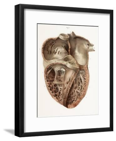 Heart Anatomy, 19th Century Illustration-Science Photo Library-Framed Photographic Print