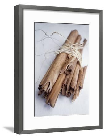 Cinnamon Sticks-Veronique Leplat-Framed Photographic Print