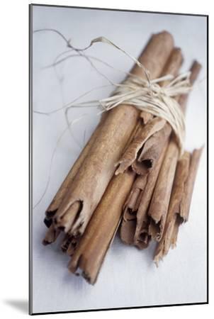 Cinnamon Sticks-Veronique Leplat-Mounted Photographic Print