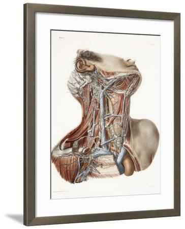 Neck Anatomy, 19th Century Artwork-Science Photo Library-Framed Photographic Print