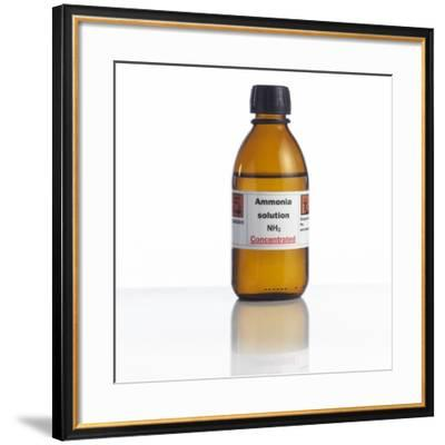 Ammonia Solution, Laboratory Bottle-Science Photo Library-Framed Photographic Print