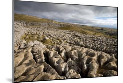 Limestone Pavement, Yorkshire-Bob Gibbons-Mounted Photographic Print