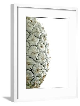 White Pineapple-Neal Grundy-Framed Photographic Print