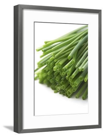 Chives-Jon Stokes-Framed Photographic Print