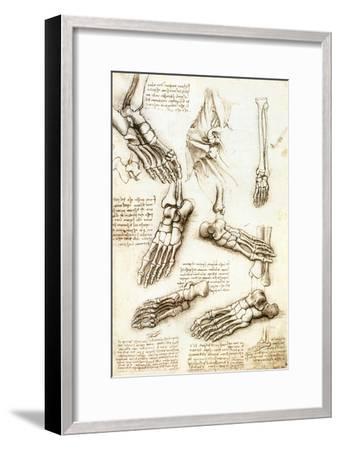 Foot Anatomy by Leonardo Da Vinci-Sheila Terry-Framed Photographic Print