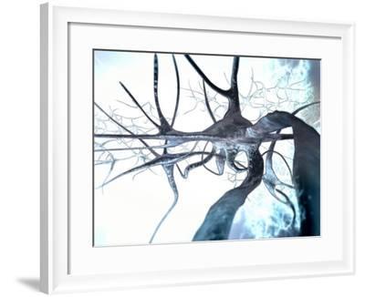 Nerve Cells, Computer Artwork--Framed Photographic Print