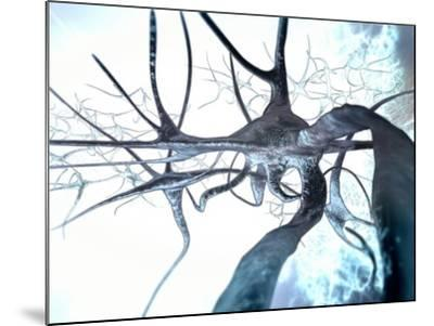 Nerve Cells, Computer Artwork--Mounted Photographic Print