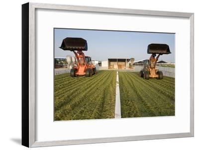Silage--Framed Photographic Print