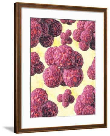 MRSA Bacteria, Artwork-David Mack-Framed Photographic Print