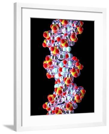 DNA Molecule, Artwork--Framed Photographic Print