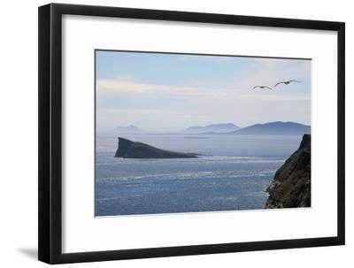 Coastal Cliffs, Falkland Islands-Charlotte Main-Framed Photographic Print