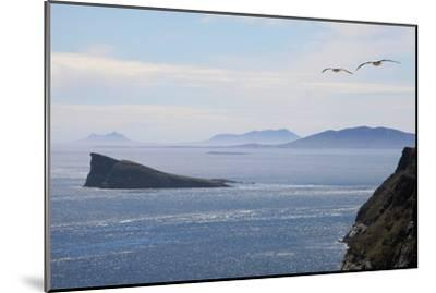Coastal Cliffs, Falkland Islands-Charlotte Main-Mounted Photographic Print
