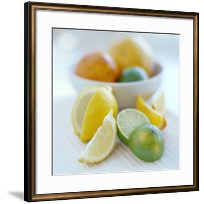 Citrus Fruits-David Munns-Framed Photographic Print