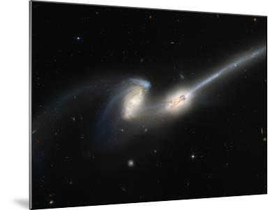 Mice Colliding Galaxies--Mounted Photographic Print