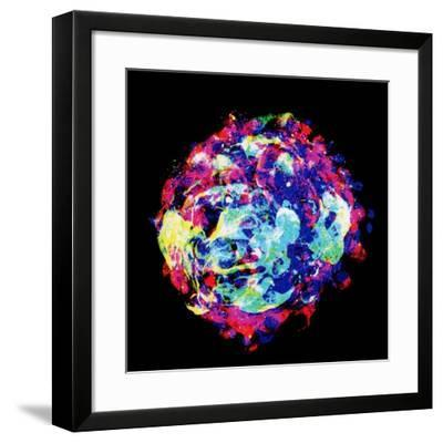 Embryo, Light Micrograph-Dr. Gopal Murti-Framed Photographic Print