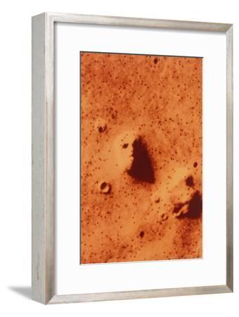 False-colour of Face on Mars--Framed Photographic Print