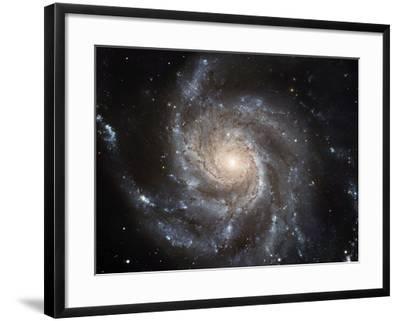 Spiral Galaxy M101--Framed Photographic Print