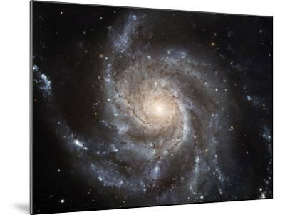 Spiral Galaxy M101--Mounted Photographic Print