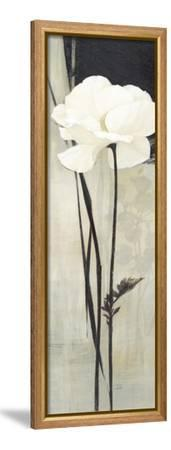 Ivoire-Ivo-Framed Stretched Canvas Print