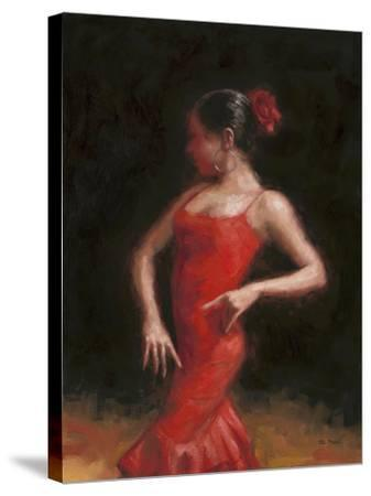 Flamenco II-Patrick Mcgannon-Stretched Canvas Print