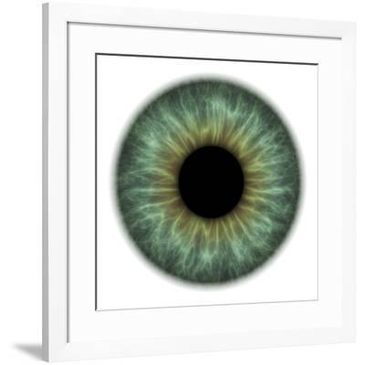 Eye-PASIEKA-Framed Photographic Print