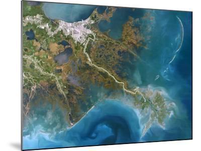 Mississippi Delta, Satellite Image-PLANETOBSERVER-Mounted Photographic Print